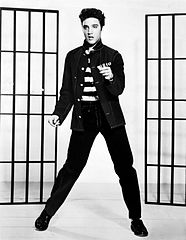 Susan's Site: Marketing Lessons We Can Learn from Elvis