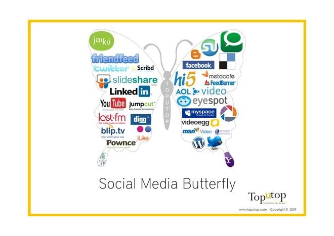 social media butterfly infograph